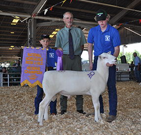 National Sale Winners